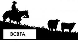 bcbfa